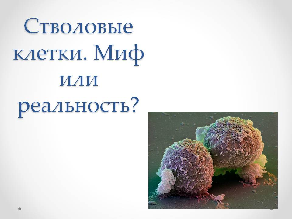 ответы доктора мясникова от 13 марта